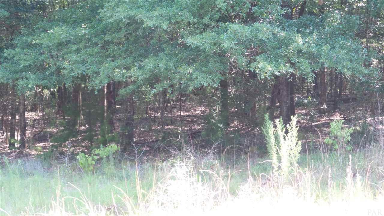 0 Deer Lake Rd, Walnut Hill, FL 32568