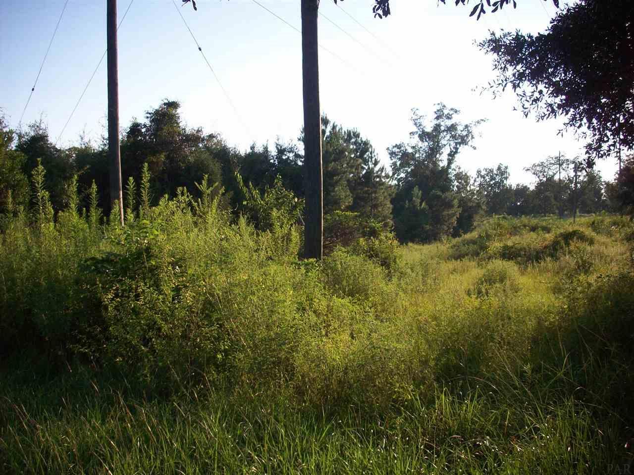 8831 Blackman St, Century, FL 32535