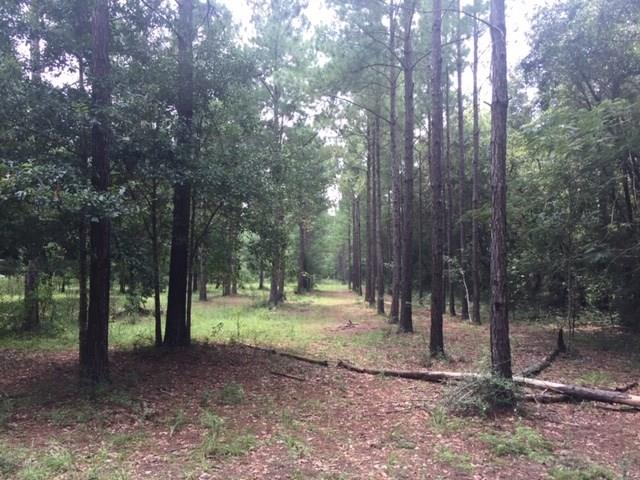 3801b&C Luther Fowler Rd, Pace, FL 32571