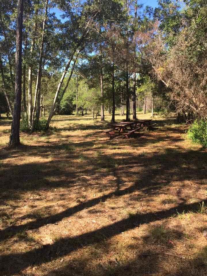 8524 Salt Grass Dr, Pensacola, FL 32526