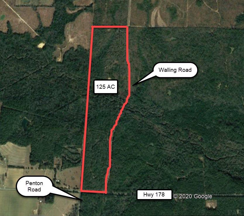 The property is heavily wooded with both hard woods and pine. The topography is gently rolling. The head waters of Coldwater Creek crosses the property from West to East in a Southeasterly direction