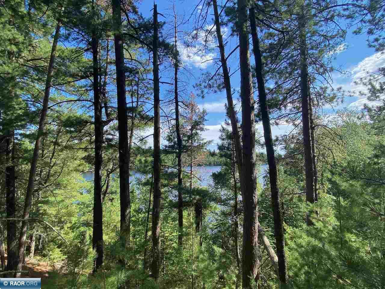 TBD Genore Trail, Orr, MN 55723