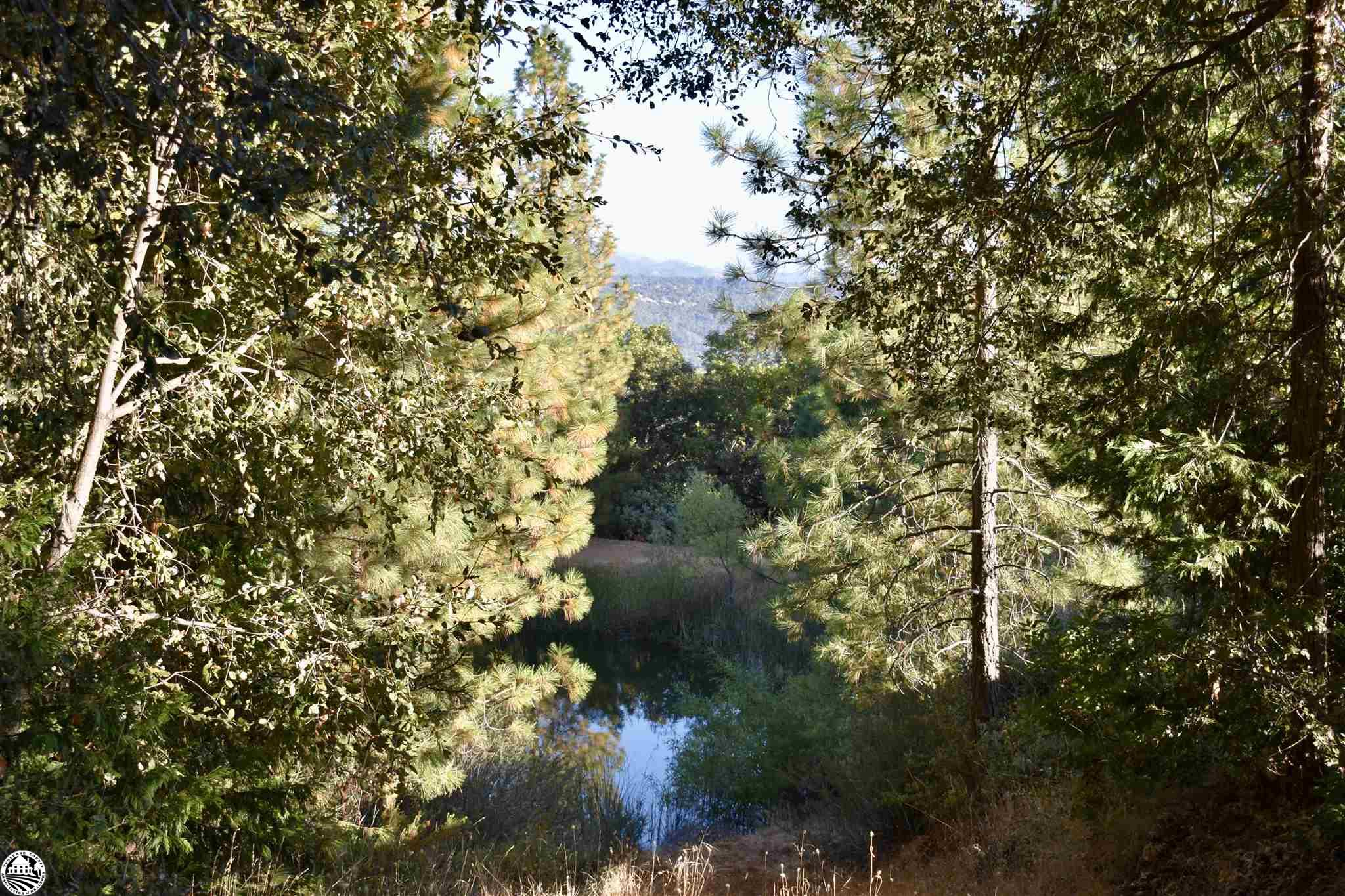 13863 Jenny Lind Rd, Sonora, CA, 95370
