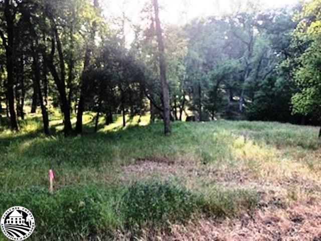 5-23-A Tannahill Drive, Groveland, CA 95321