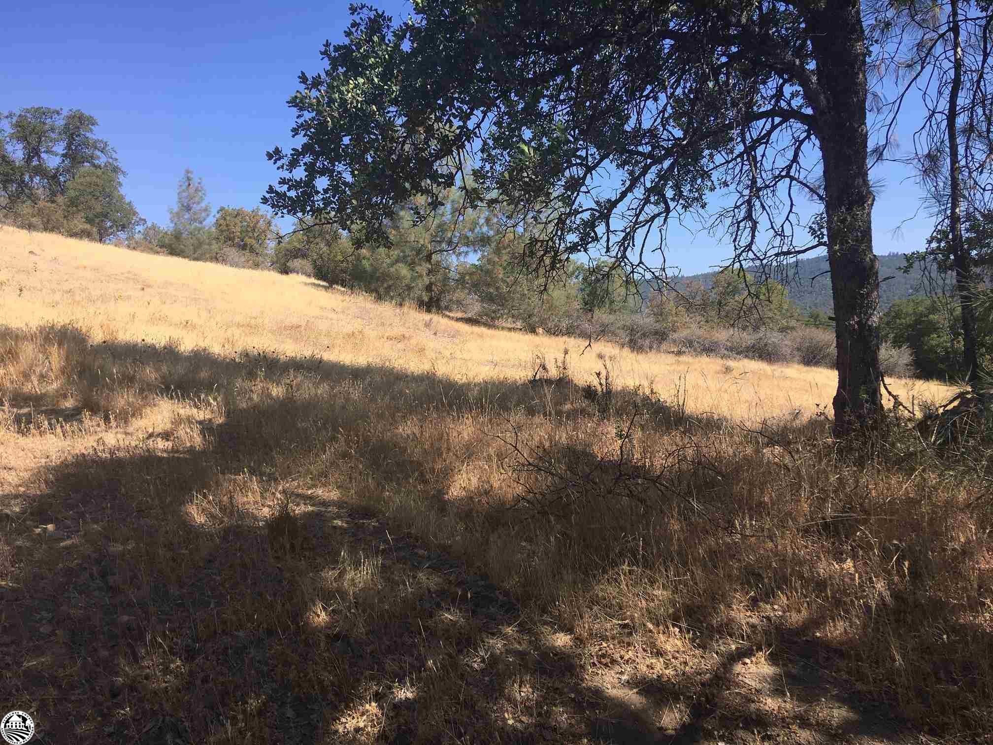 16790 Amy Drive, Sonora, CA 95370
