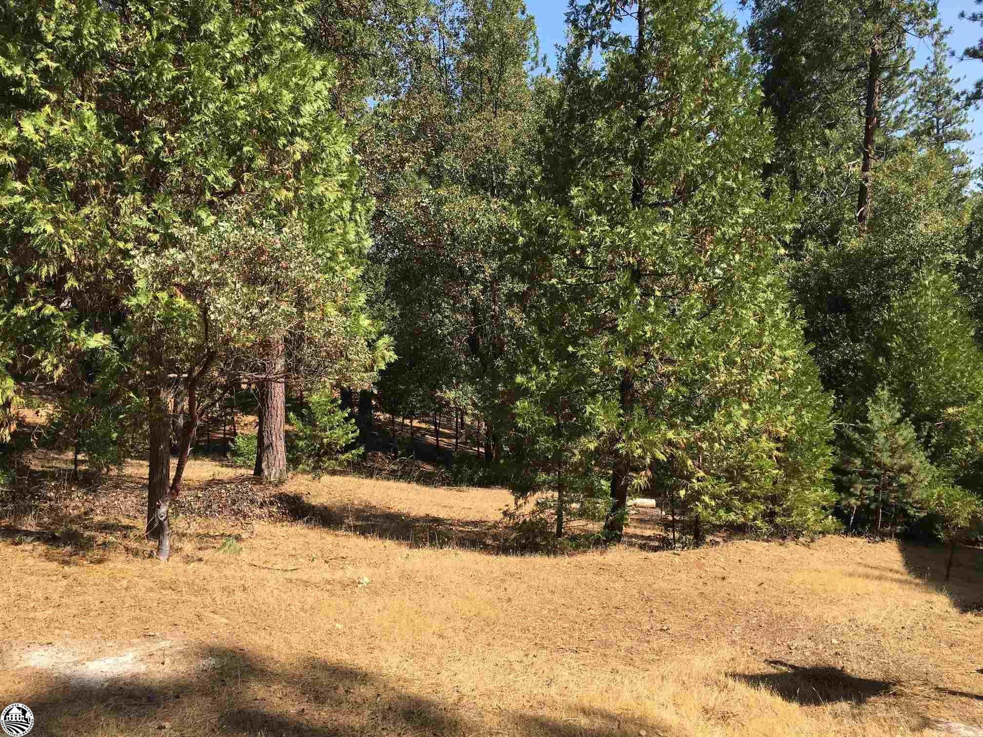 12918 Pine Mountain Drive, Groveland, CA 95321