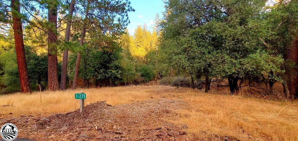13095 Fox Court, Groveland, CA 95321