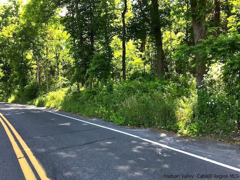Central Catskills Real Estate Search Provided By Catskill Dream Team